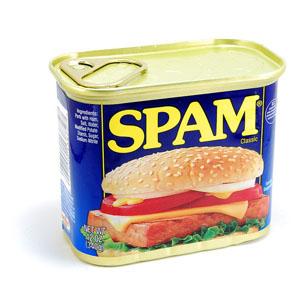 Thịt đóng hộp Spam (340g/ hộp)
